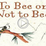 To Bee Or Not To Bee Video Image